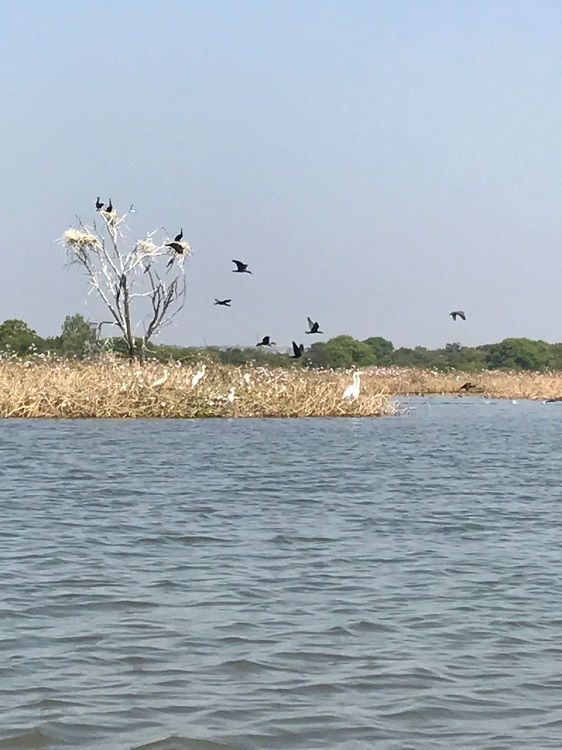nagasamudram-lake